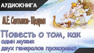 """""""Повесть о том как мужик двух генералов прокормил"""" М.Е.Салтыков-Щедрин. Аудиосказка"""