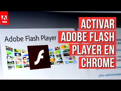 Como ACTIVAR Adobe Flash Player En Google Chrome 2019
