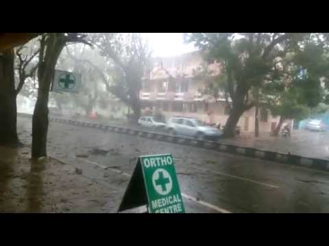 Watch Real Action Huge Tree Falling - Heavy Rains In Bangalore!