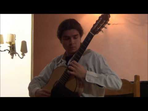 Vassilis Digos - The Whispers of an Harp (to Evangelos & Liza) (Composition by Vassilis Digos) live