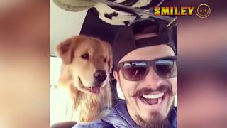 The Best Funny Video About Animals 😂 I Dare You Not To Laugh funny  part 52
