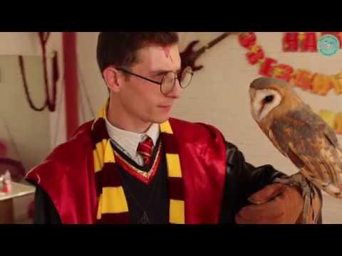 "Квест ""Гарри Поттер"""