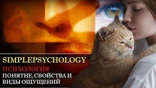 Психология. Понятие, свойства и виды ощущений.
