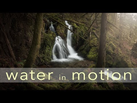 WATER in MOTION  Photographing gnarly trees and Waterfalls