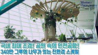 국내 최대 조경! 공원 속의 인천공항!