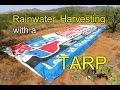 Rainwater Harvesting with a TARP
