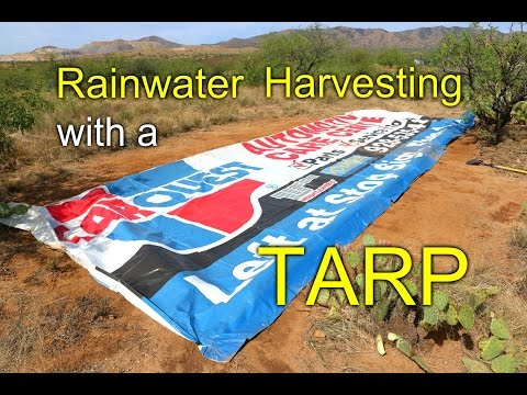 Rainwater Harvesting with a TARP