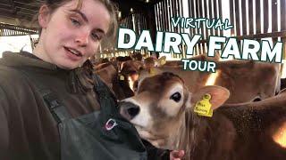 A Virtual Tour Of A Dairy Farm In Biggar, Scotland (Part 1)