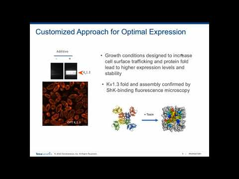 High Throughput Characterization of Ion Channel Activity Blocking mAbs with Array SPR