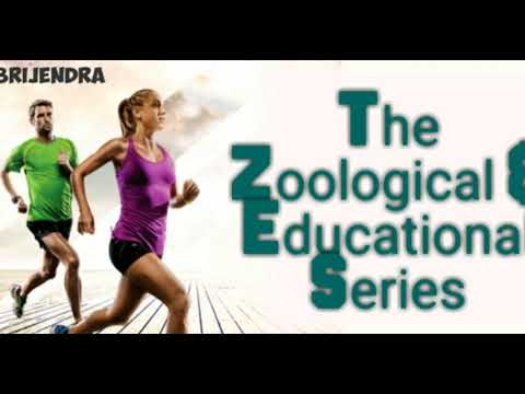 Online Education for Zoology