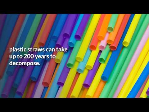 Reusable Silicone Straws - Bendable Silicone Drinking Straw Reviews