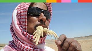 Ăn sống thằn lằn đuôi gai và 10 món ăn kinh dị nhất thế giới bạn sẽ không dám thử