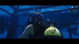 Трейлер 47 метров под водой фильм 2017