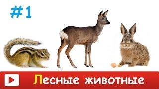 [ ЛЕСНЫЕ ЗВЕРИ для ДЕТЕЙ ] Развивающий МУЛЬТИК для ДЕТЕЙ - лесные ЖИВОТНЫЕ. Как говорят животные.
