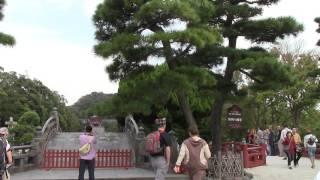 鳥居 鎌倉初代将軍源頼朝ゆかりの神社で 日本三大八幡神社とも言います...