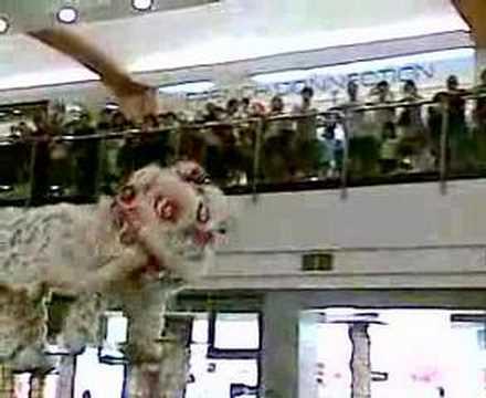 Barongsai at Pondok Indah Mall 2