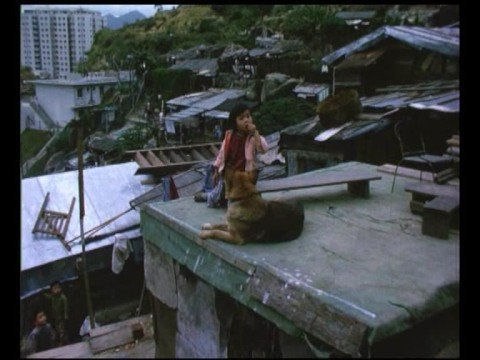 Hong Kong squatters in 1962