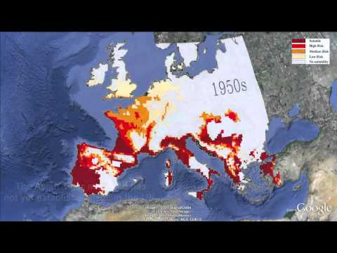 The Asian Tiger mosquito: climate controls in Europe