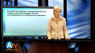 Практическая грамматика русского языка. Общая информация.