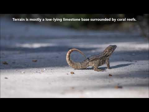ZF2RM Cayman Islands. From dxnews.com