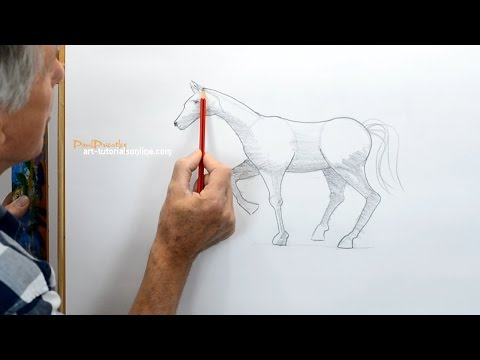 How To Draw A Horse Simply Youtube