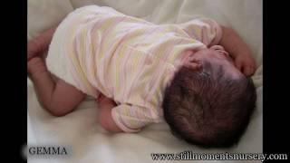 Reborn Baby Dolls by Nikki Holland - Picture Show 3