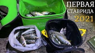 Долгожданная СТАВРИДА Открытие сезона 2021 Рыбалка на Чёрном море