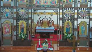 Ukrainian Catholic Divine  Liturgy  11/10/2020