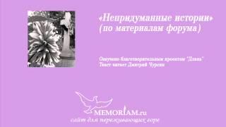 Непридуманные истории (по материалам форума)(, 2013-01-24T07:07:12.000Z)