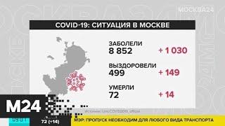 Число заразившихся коронавирусом в мире превысило 1,7 миллиона человек - Москва 24