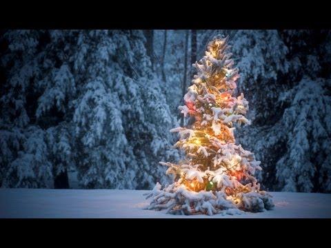 Eco2greetings Christmas Ecards For Business Christmas