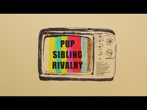 Смотреть клип Pup - Sibling Rivalry