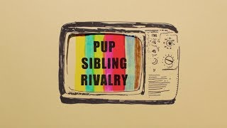 PUP - SIBLING RIVALRY (Official Music Video)