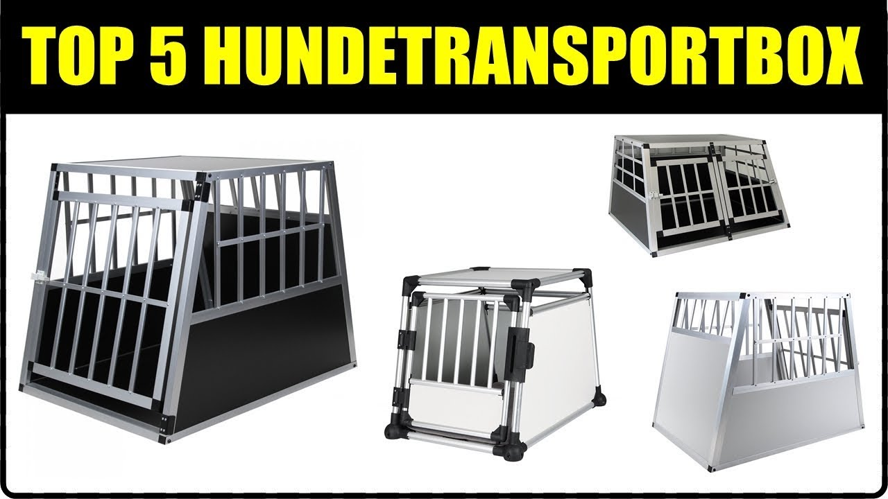 top 5 auto hundetransportboxen hundetransport im auto. Black Bedroom Furniture Sets. Home Design Ideas