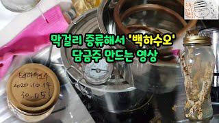 [녹칸주] 막걸리 증류해서 백하수오 담금주 만드는 영상…