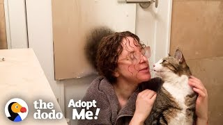 This Is The #1 Thing You Can Do To Help Shelter Pets Right Now | The Dodo Adopt Me!