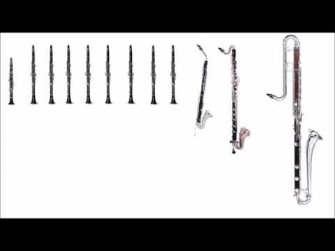 Why do people hate the Alto Clarinet?