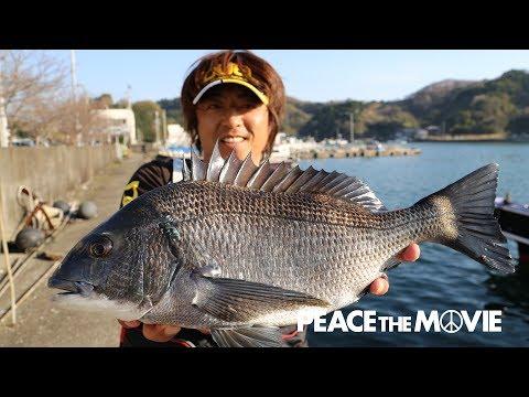 PEACE THE MOVIE「釣っても釣り足りません」四国地方 高知県・鵜来島の旅(後編)/平和卓也(799)