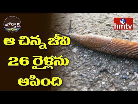ఆ చిన్న జీవి 26 రైళ్లను ఆపింది | Jordar News | hmtv