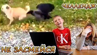 НЕ ЗАСМЕЙСЯ ЧеЛлЕнДж 😁 Смешные дети и животные! Подборка приколов 2019 №1 🤣