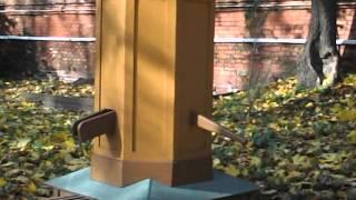 видео Московские музеи Льва Толстого