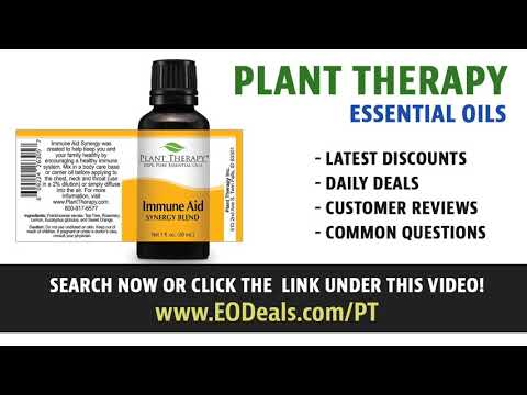 Plant Therapy Sage Dalmation Essential Oil