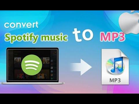 Как снять DRM защиту Mp3 Spotify MacOS?!