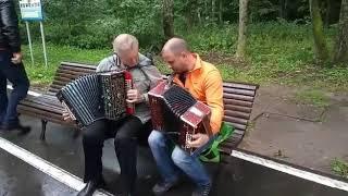 03.08.19.Измайловский пятачек.Игра на гармони.
