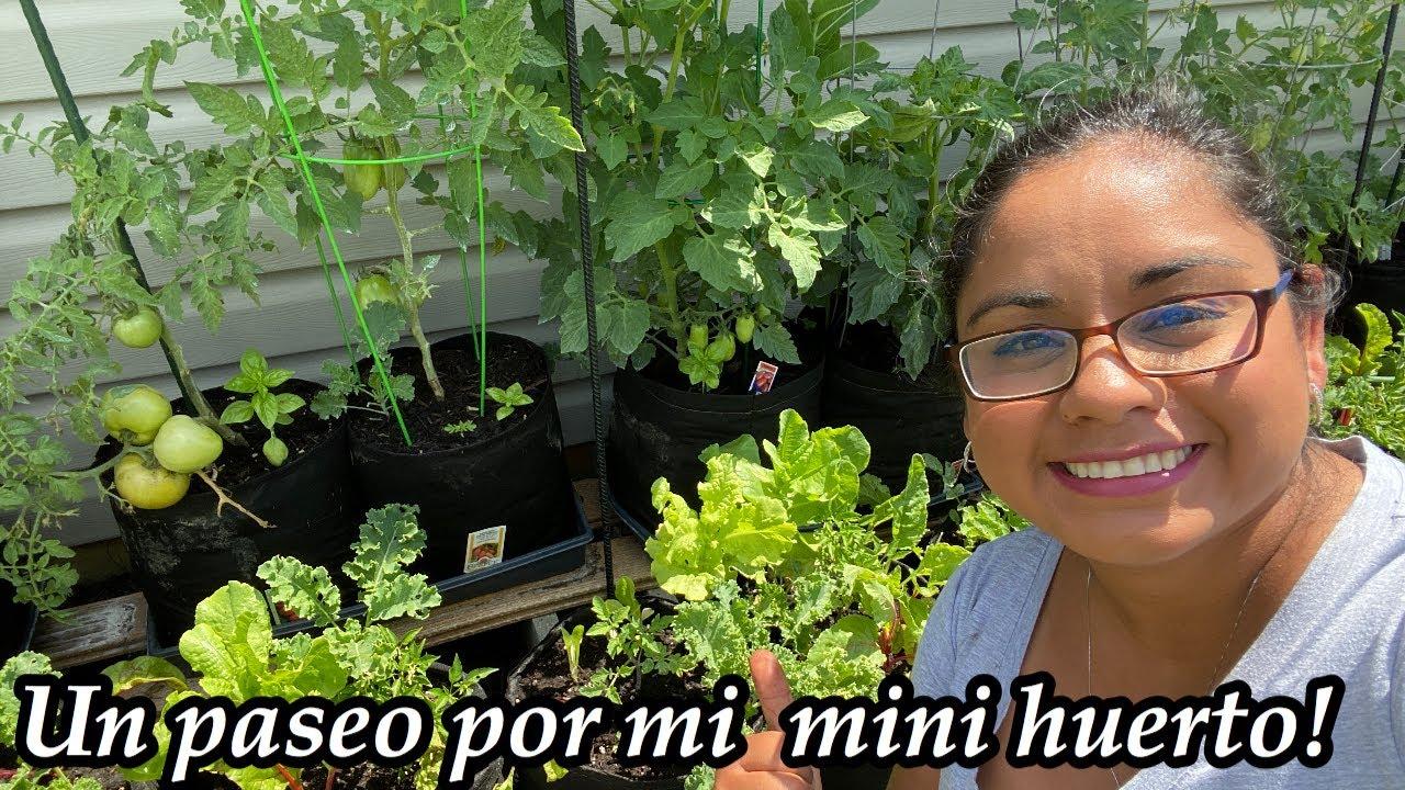Ya hay tomates, y pepinos! Y menos animalitos ganándome los vegetales!