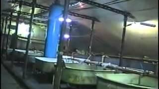 видео Бассейновое оборудование в Одессе