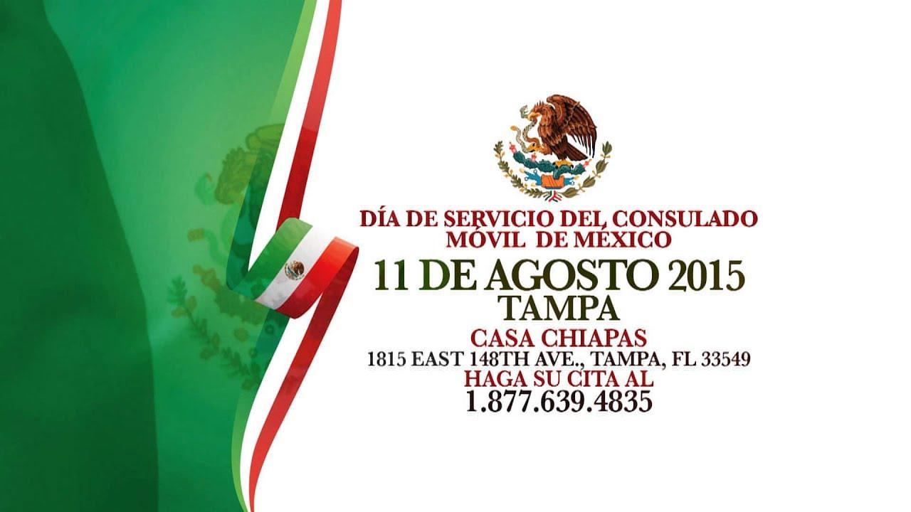 Bonito Acta De Nacimiento Tampa Viñeta - Ideas de Diseño de ...