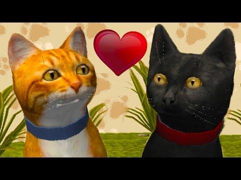 Симулятор КОТА и КОШКИ #3 Черные КОТИК влюбился в КОШКУ Бомбейской породы. Паук и Мышь против Кида