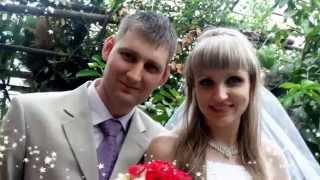 Свадебные фотографии сделаны профессионалами! Доверяйте только им!