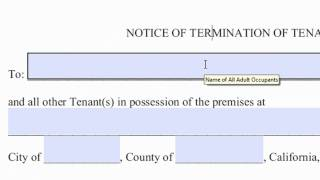 30 Day Notice to Quit or Terminate Tenancy - How to Fill Out by San Diego Eviction Attorney